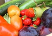 INESC TEC conclui projeto sobre a gestão da cadeia de abastecimento de alimentos perecíveis