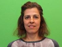 Investigadora do INESC TEC edita «special issue» sobre Multimédia
