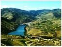 Portal Douro (notícia)